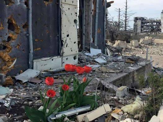 Рада отказалась внести в повестку дня законопроект, разрешающий назначить Луценко генпрокурором - Цензор.НЕТ 3434