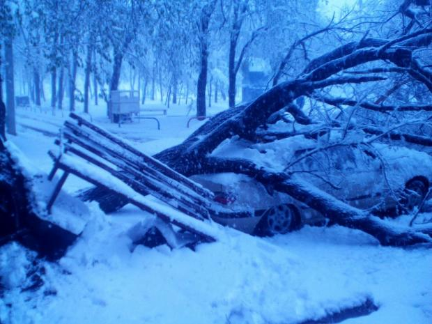 Погода в березнике архангельская область виноградовский район