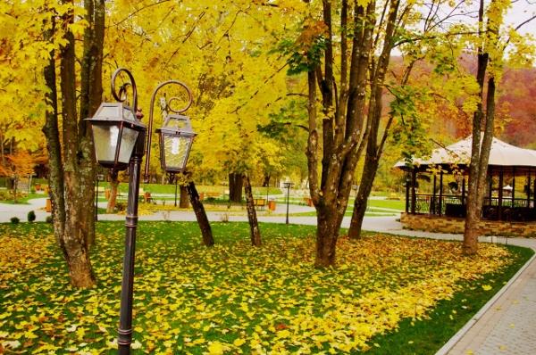 """У Київ прийде """"бабине літо"""" разом із золотою осінню. Ілюстрація: соцмережі."""