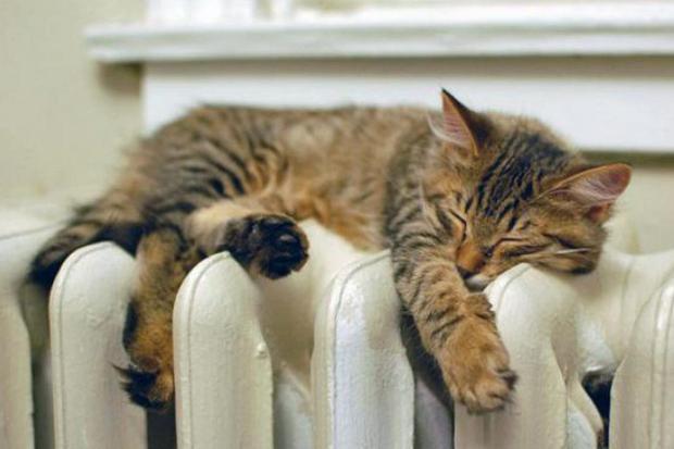 В Івано-Франківську планують підняти тарифи на гарячу воду та тепло у квартирах