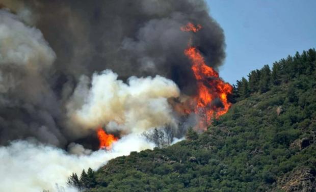 Загорілися ліси в Туреччині